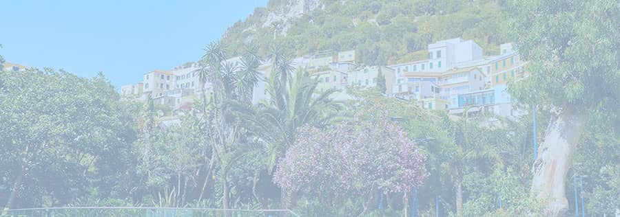 Houses and flats for sale on the rock of Gibraltar with palm trees and flowers